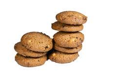 Cioccolato Chip Cookie Immagine Stock Libera da Diritti