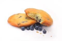 Cioccolato Chip Muffin Tops dei mirtilli Immagini Stock Libere da Diritti