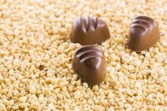 Cioccolato con crocant Fotografia Stock