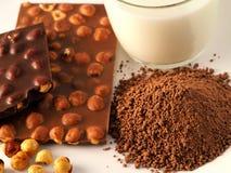 Cioccolato con gli ingredienti Fotografia Stock Libera da Diritti