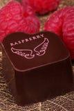 Cioccolato con i lamponi Fotografia Stock Libera da Diritti