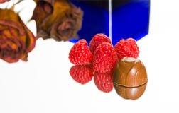 Cioccolato delizioso con i lamponi. Fotografia Stock