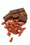 Cioccolato della bacca di Goji Fotografie Stock Libere da Diritti