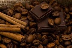 Cioccolato e spezie immagini stock libere da diritti