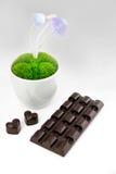 Cioccolato fatto a mano Immagini Stock