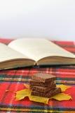 Cioccolato fondente delizioso del latte su profondità di campo bassa della foglia di acero Immagine Stock