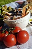 Cioppino Stockbild