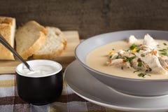 Ciorba radauteata - traditional Romanian chicken soup. With sour cream Stock Photos