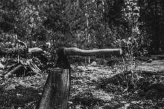 Cioska wtykająca Cioska i drewno Słońce bielił cioskę wtykającą w bloku drewno Obrazy Royalty Free