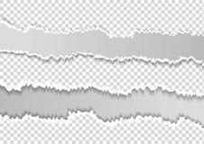 Ciosowy rozdzieraj?cy horyzontalny siwieje papier dla teksta lub wiadomo?? jest na bia?ym tle royalty ilustracja