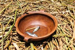 Ciotola ceramica con il piccolo pesce morto fotografia stock