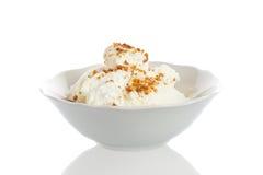 Ciotola con gelato Fotografia Stock