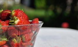 Ciotola con strayberry fresco Fotografia Stock Libera da Diritti