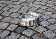 Ciotola del cane dell'acciaio inossidabile Immagine Stock