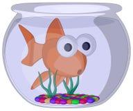 Ciotola del pesce Immagine Stock Libera da Diritti