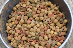 Ciotola di alimento di cane asciutto Fotografia Stock Libera da Diritti