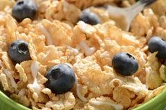 Ciotola di cereale Immagini Stock Libere da Diritti