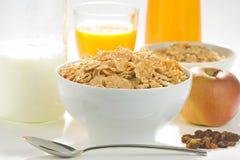 Ciotola di cereale con l'uva passa fotografia stock