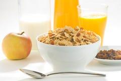 Ciotola di cereale con l'uva passa fotografia stock libera da diritti