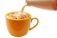Ciotola di cereale con latte Immagini Stock