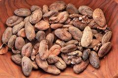 Ciotola di fave di cacao immagine stock