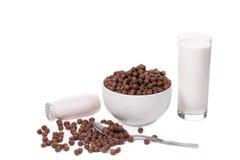 Ciotola di fiocchi e di latte di avena Immagine Stock Libera da Diritti
