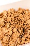 Ciotola di fiocco di cereali con il cucchiaio Immagini Stock