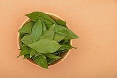 Ciotola di foglie della baia sulla carta kraft Fotografia Stock