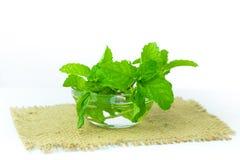 Ciotola di foglie di menta isolate su fondo bianco, vista frontale, min Fotografie Stock