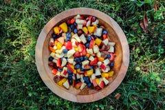 Ciotola di frutta Fotografia Stock