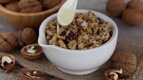 Ciotola di granola casalingo con i dadi e l'uva passa stock footage