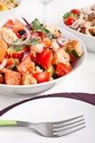 Ciotola di insalata del pane di Panzanella Fotografie Stock Libere da Diritti