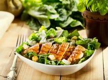 Ciotola di insalata di pollo Immagine Stock Libera da Diritti