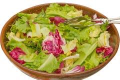 Ciotola di insalata di verdure Immagini Stock