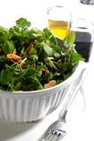 Ciotola di insalata frondosa Fotografia Stock Libera da Diritti