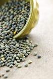 Ciotola di lenticchie francesi crude Fotografia Stock