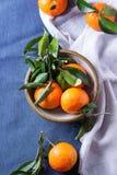 Ciotola di mandarini con le foglie Fotografie Stock Libere da Diritti
