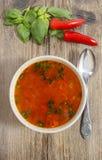 Ciotola di minestra del pomodoro fotografia stock