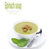 Ciotola di minestra tradizionale degli spinaci con i crostini, isolata fotografia stock