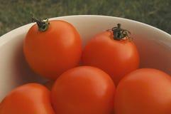 Ciotola di pomodori a scarso tasso di acidità arancioni Immagini Stock