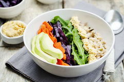 Ciotola di riso con cavolo rosso, le carote, l'avocado, la rucola ed il hummus Fotografia Stock