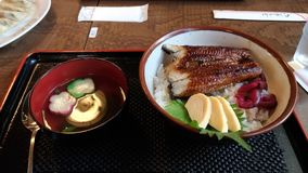 Ciotola di riso del pesce dell'anguilla con la minestra di miso fotografia stock