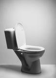 Ciotola di toilette Fotografie Stock Libere da Diritti