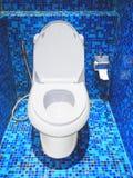 Ciotola di toilette e carta igienica bianche in un bagno Immagine Stock