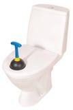 Ciotola di toilette e tuffatore bianchi (percorso di ritaglio) fotografia stock