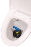 Ciotola di toilette e tuffatore bianchi (percorso di ritaglio) immagine stock libera da diritti