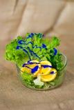 Ciotola di vetro con insalata verde fresca, le arance affettate e la pittura blu Immagini Stock Libere da Diritti
