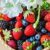 Ciotola di vimini con un giardino delle bacche variopinte del raccolto, petunia decorata del fiore Fotografie Stock Libere da Diritti