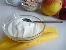 Ciotola di yogurt bianco sano fresco immagini stock libere da diritti