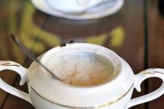 Ciotola di zucchero e della mosca Immagini Stock